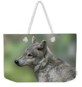 Gray Wolf  Weekender Tote Bag
