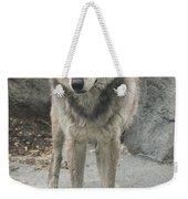 Gray Wolf Stare Weekender Tote Bag