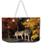 Gray Wolves In Autumn Weekender Tote Bag