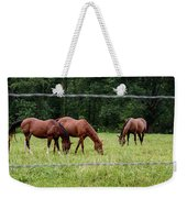 Grazing Horses - Cades Cove - Great Smoky Mountains Tennessee Weekender Tote Bag