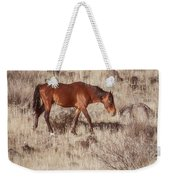 Grazing In The Winter Grass Weekender Tote Bag