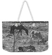 Grazing Weekender Tote Bag by Michael Peychich