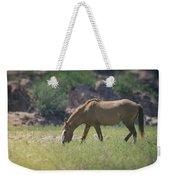 Grazing Wild Mustang  Weekender Tote Bag