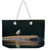 Great Black-backed Gull  Weekender Tote Bag
