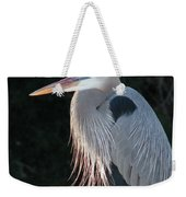 Great Blue At Rest Weekender Tote Bag