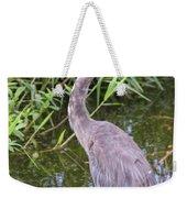Great Blue Heron Closeup Weekender Tote Bag