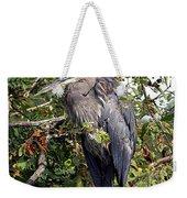 Great Blue Heron In A Tree Weekender Tote Bag