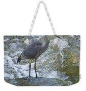 Great Blue Heron Standing In Stream Weekender Tote Bag