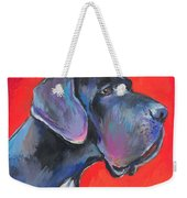 Great Dane Painting Weekender Tote Bag by Svetlana Novikova