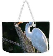 Great Egret At Rest Weekender Tote Bag