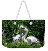 Great Egret Chicks 1 Weekender Tote Bag