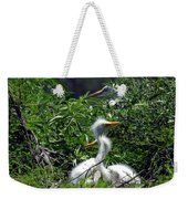 Great Egret Chicks 2 Weekender Tote Bag