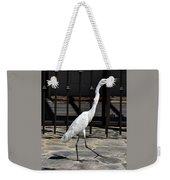 Great Egret In The Neighborhood Strutting 1 Weekender Tote Bag