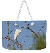 Great Egret In Tree Weekender Tote Bag