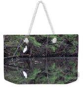 Great Egret Resting Weekender Tote Bag