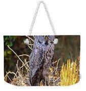 Great Grey Owl Portrait Weekender Tote Bag
