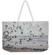 Great Gull Group On The Beach Weekender Tote Bag