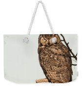 Great Horned Owl At Dusk Weekender Tote Bag