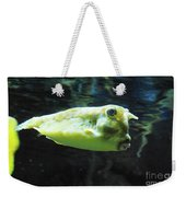 Great Longhorn Cowfish Swimming Along Underwater Weekender Tote Bag