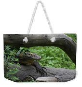 Great Look At A Komodo Monitor Lizard With Long Claws Weekender Tote Bag