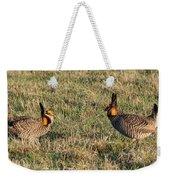 Greater Prairie Chicken Males 1 Weekender Tote Bag