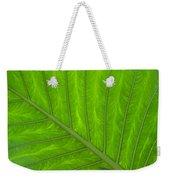 Green Abstract No. 4 Weekender Tote Bag