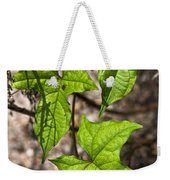 Green Arrowheads Weekender Tote Bag