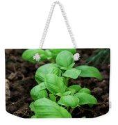 Green Arugula Growing In The Garden Weekender Tote Bag