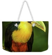 Green-billed Toucan Perched On Branch In Jungle Weekender Tote Bag