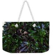 Green-black Cucculent Plant. Big Bush Weekender Tote Bag