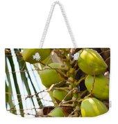 Green Coconut Weekender Tote Bag