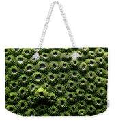 Green Coral Weekender Tote Bag