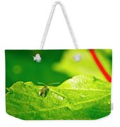 Green Creature On A Broad Leaf. Weekender Tote Bag