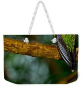 Green-crowned Brilliant Hummingbird Weekender Tote Bag
