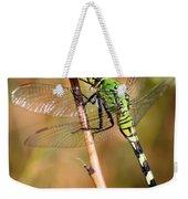 Green Dragonfly Closeup Weekender Tote Bag