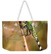 Green Dragonfly Closeup Weekender Tote Bag
