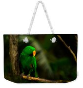 Green Eclectus Parrot Male Weekender Tote Bag