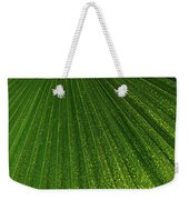 Green Fan - Radiating Lines And Scattered Polka-dots Weekender Tote Bag