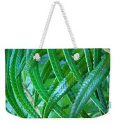 Green Forest Fern Fronds Art Prints Baslee Troutman Weekender Tote Bag