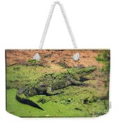 Green Gator With Border Weekender Tote Bag