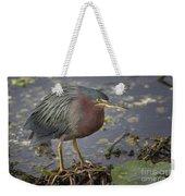 Green Heron 52 Weekender Tote Bag