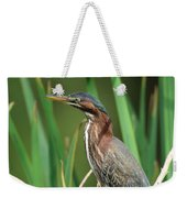 Green Heron At The Governor's Palace Gardens Weekender Tote Bag