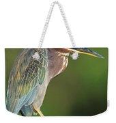 Green Heron Butorides Virescens Weekender Tote Bag