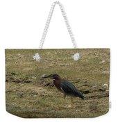 Green Heron In Central Texas Weekender Tote Bag