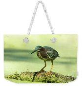 Green Heron In Green Algae Weekender Tote Bag
