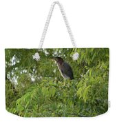 Green Heron In Tree Weekender Tote Bag