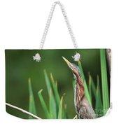 Green Heron Watches Weekender Tote Bag