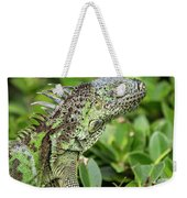 Green Iguana Vertical Weekender Tote Bag
