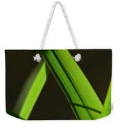 Green Leaves In Sunlight Weekender Tote Bag