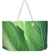 Green Leaves No. 2 Weekender Tote Bag by Todd Blanchard